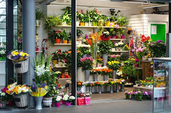 Flowers, Gifts And Sweets Shop  project feasibility